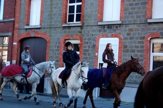 St Hubert chevaux DSC_0323