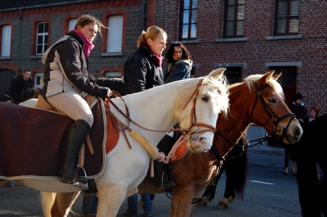 st hubert chevaux DSC_0316