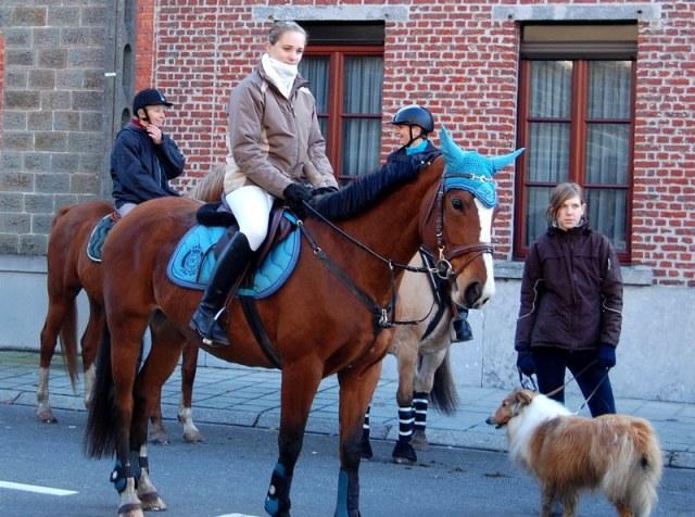 st hubert chevaux DSC_0320