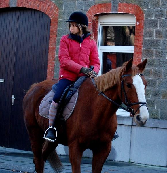 st hubert chevaux DSC_0326