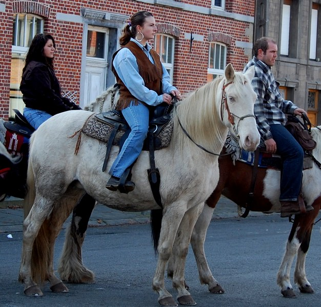 st hubert chevaux DSC_0343