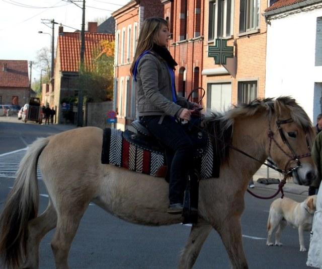 st hubert chevaux DSC_0342