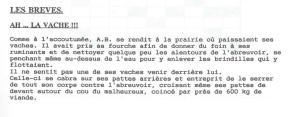 1995 18 le petit campenaire février 1995 page 9.jpg