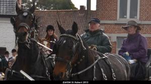St Hubert 2013 Stambruges (76).JPG