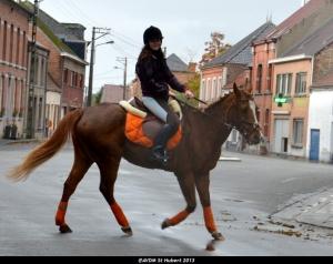 St Hubert 2013 Stambruges (126).JPG