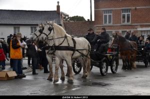 St Hubert 2013 Stambruges (79).JPG