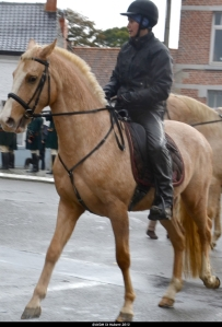 St Hubert 2013 Stambruges (65).JPG