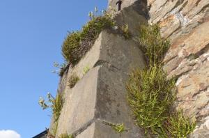 murs de pierres
