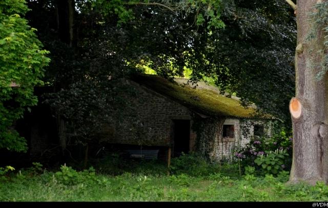 Grandglise  Château Pollet Manfroy (4).JPG